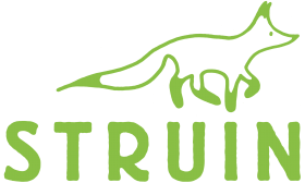 Struin Logo